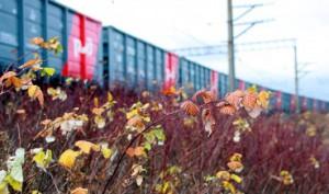 РЖД намерено поднимать тарифы на грузоперевозки в 2015 году