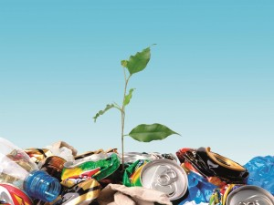 В ЖКХ Сервис незаконно подняли тариф омским жилищникам на утилизацию мусора