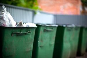 Тариф на вывоз мусора в Хабаровске назвали золотым