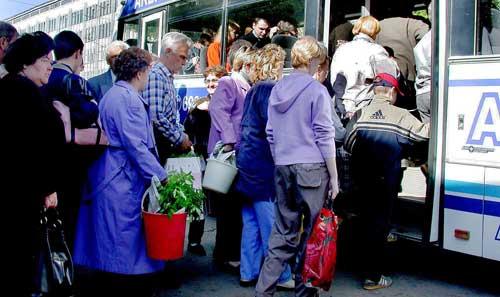 В Оренбурге запускают садоводческие маршруты