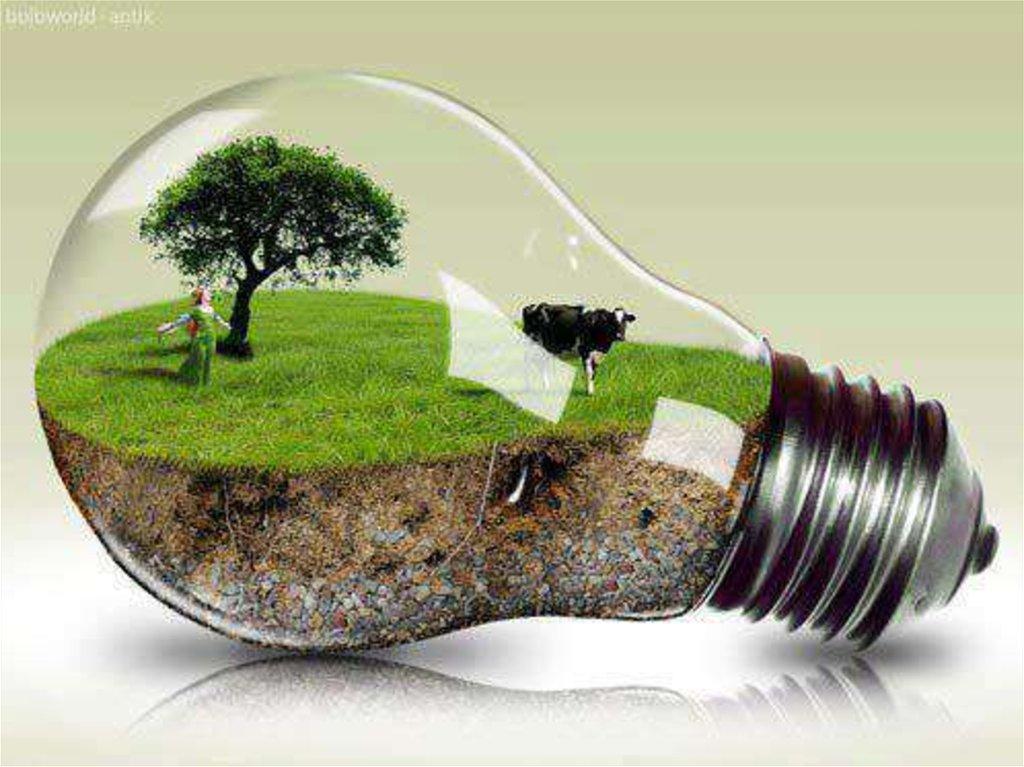 Да будет свет: в Подмосковье из мусора начнут производить электроэнергию