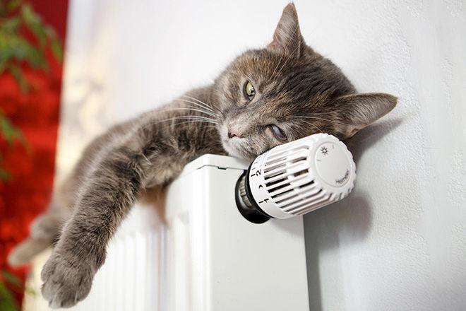 Ульяновск заплатит за тепло по-новому