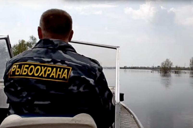 Запреты на морскую рыбалку в Крыму на 2019 год
