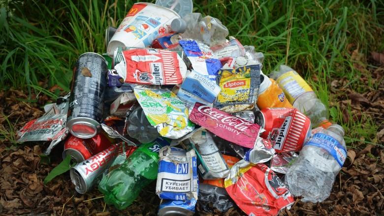 Вывоз мусора Минприроды оценило в 90 рублей