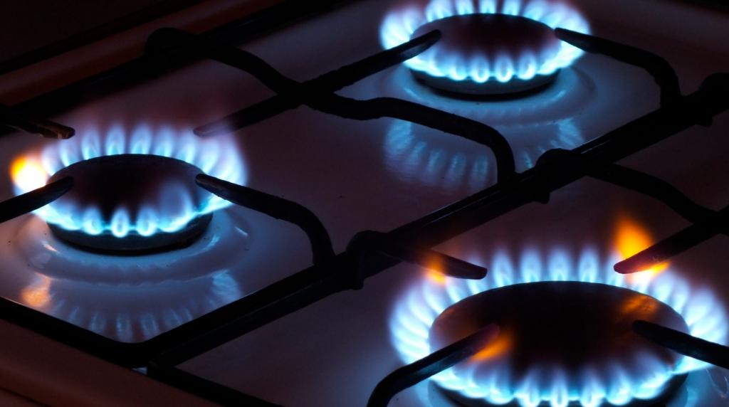 Путин приказал Газпрому бесплатно подключать россиян к газу
