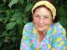 В Омской области 22 категориям граждан будет оказываться социальная поддержка!