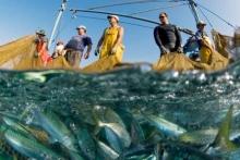 Новый закон о рыбалке в РФ выведет рыболовство на новый уровень