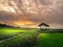 В Бурятии утвердят тариф на установление границ дальневосточного гектара