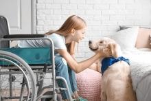 Инвалидам и детям с ОВЗ установили беззаявительные ежемесячные денежные выплаты