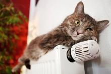Тарифы на тепло в Иркутской области поднимать не будут