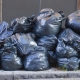 Владимир Путин поручил Правительству разобраться с ценами на вывоз мусора