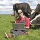 Интернет в села прокладывают исками