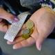 В Екатеринбурге проверят стоимость проезда в общественном транспорте
