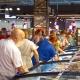 Чиновники возьмутся за магазины-дискаунтеры, цены на лекарства и бензин, тарифы на ЖКУ и проезд