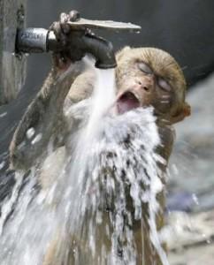 водоснабжение, перебои водоснабжения