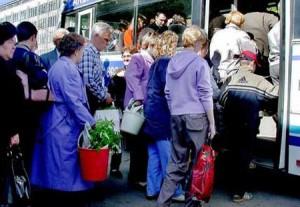 В Казани тариф для перевозки пассажиров по сезонным маршрутам не изменится