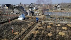 Путин подписал закон о садоводческих и огороднических товариществах